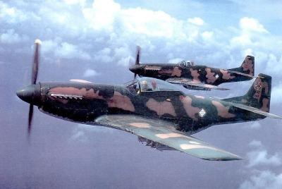https://www.swissmustangs.ch/var/m_7/71/71f/28906/1726025-FAD-1912~pilot~Gral~Bonilla~1983_a.jpg